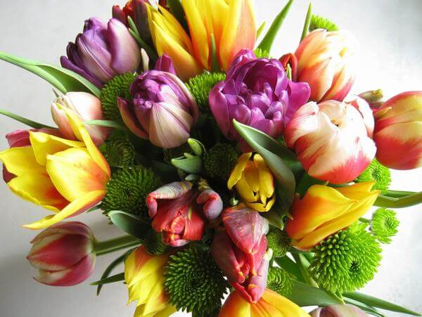 Tulip basket makes a meaningful and beautiful birthday.