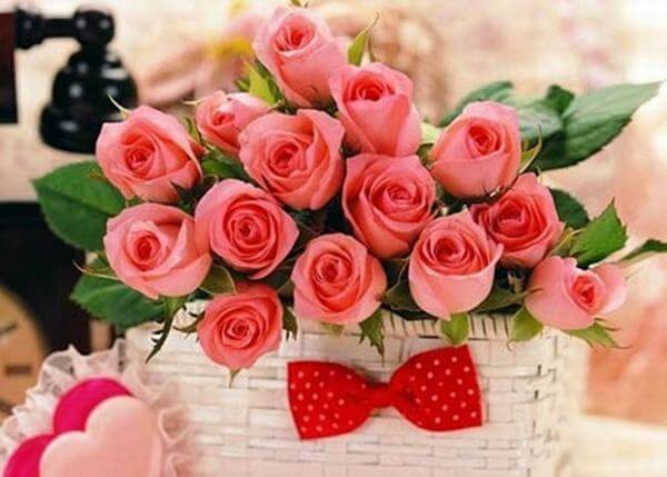 Romantic roses - Images of the world's most beautiful birthday bouquets, unique meanings