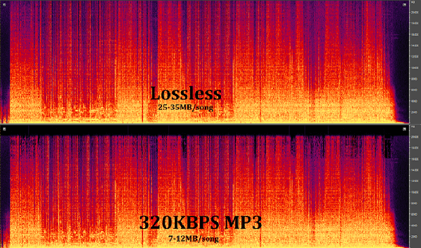 Compare the quality of Lossless music and Mp3 320kbps