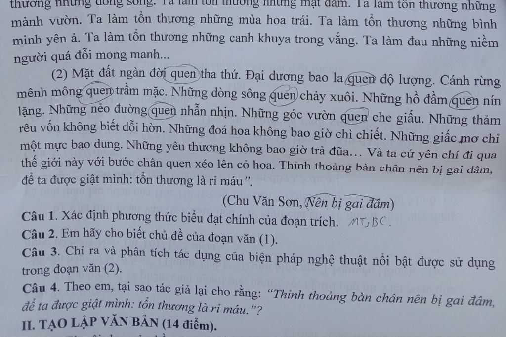 ac-dinh-phuong-thuc-bieu-dat-chinh-cua-doan-trich