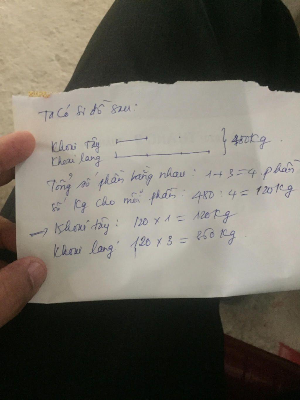 nha-bac-viet-thu-hoac-duoc-480k-khoai-lang-va-khoai-tay-khoi-luong-khoai-lang-gap-ba-lan-khoi-lu
